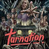 Tarnation - Daniel Armstrong Interview