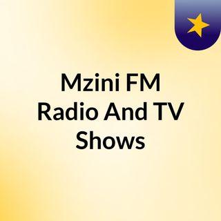 Episode 11 - Mzini FM Radio And TV Shows