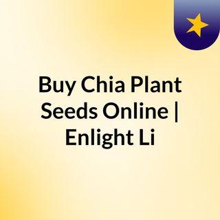 Buy Chia Plant Seeds Online | Enlight Life