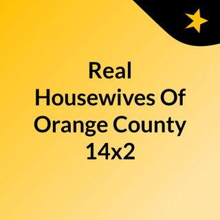Real Housewives Of Orange County 14x2