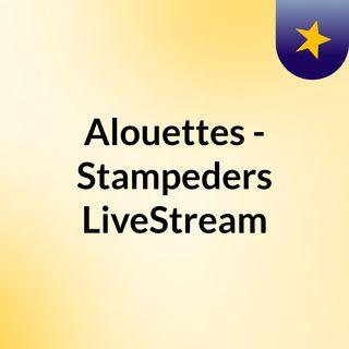 Alouettes - Stampeders LiveStream