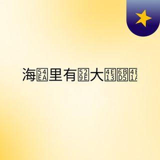 上海哪里有办大专毕业证