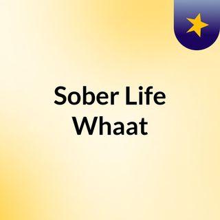 Sober Life Whaat????