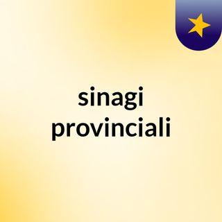sinagi provinciali