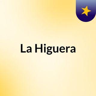 Programa nº 17 T2 La Higuera