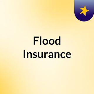 Flood Insursance