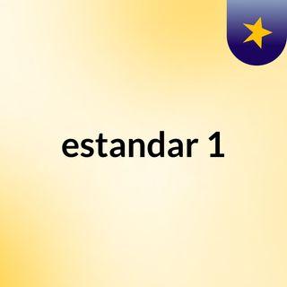 estandar 1