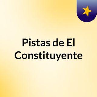 Ante Colusion del Confort Habla Eduardo Gutierrez Presidente Partido Constituyente de Chile (2)