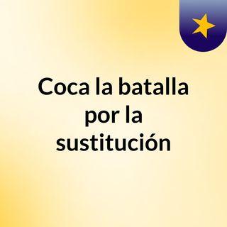 Coca: la batalla por la sustitución