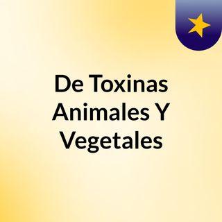Episodio 1 - De Toxinas Animales Y Vegetales