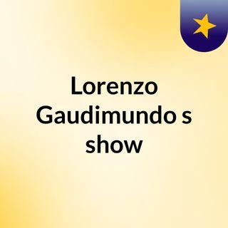 Lorenzo Gaudimundo's show
