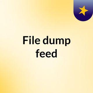 File dump feed