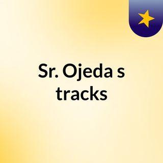 Sr. Ojeda's tracks