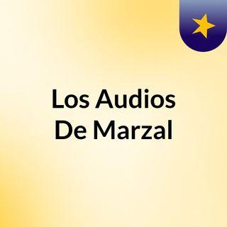 Los Audios De Marzal