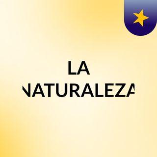 LA NATURALEZA 8-1
