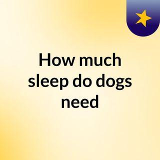 How much sleep do dogs need