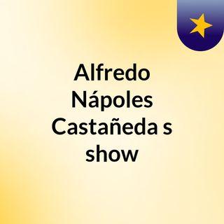 Alfredo Nápoles Castañeda's show