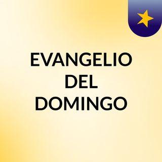 EVANGELIO DEL DOMINGO