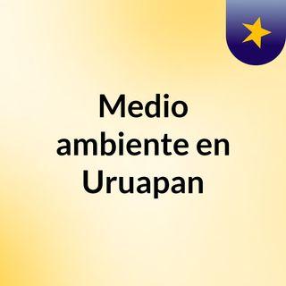 Medio ambiente en Uruapan
