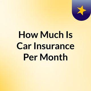 Auto Insurance Per Month