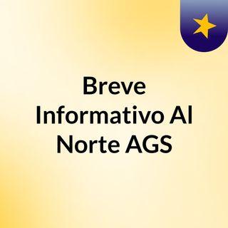 Breve Informativo Al Norte AGS