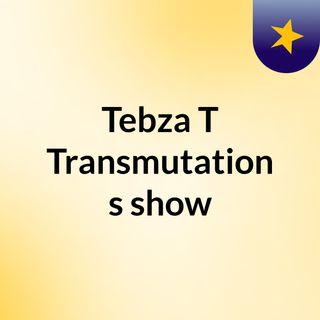 Tebza T Transmutation's show