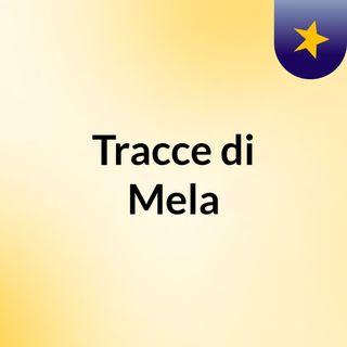 Tracce di Mela