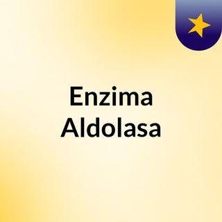 Enzima Aldolasa