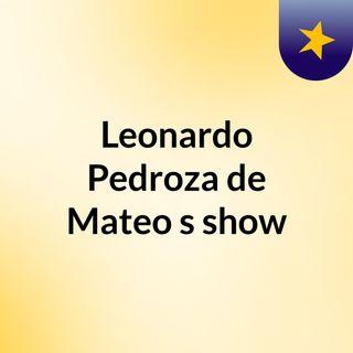 Leonardo Pedroza de Mateo's show