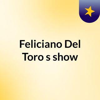 Feliciano Del Toro's show