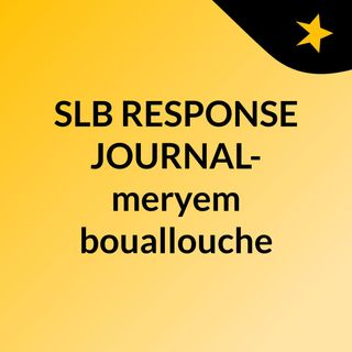 SLB RESPONSE JOURNAL- meryem bouallouche