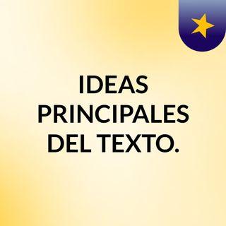 IDEAS PRINCIPALES DEL TEXTO.