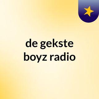 voorstelen presentator radio - de gekste boyz radio