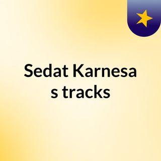 Sedat Karnesa's tracks
