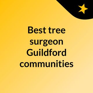 Best tree surgeon Guildford communities need