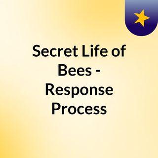 Secret Life of Bees - Response Process