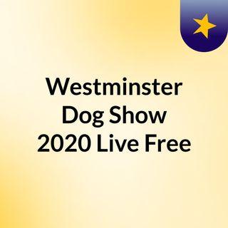Westminster Dog Show 2020 Live Free