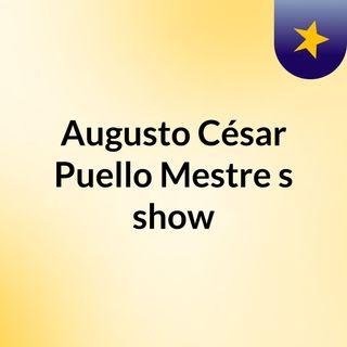 Augusto César Puello Mestre's show