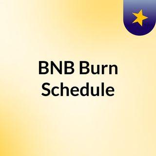 BNB Burn Schedule-Key points of burning