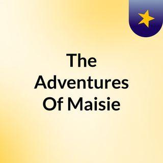The Adventures Of Maisie