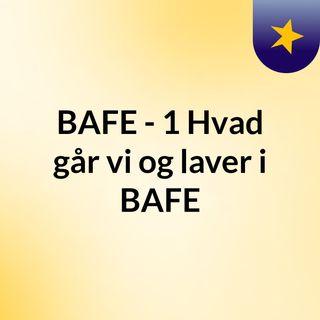 BAFE - #1 Hvad går vi og laver i BAFE