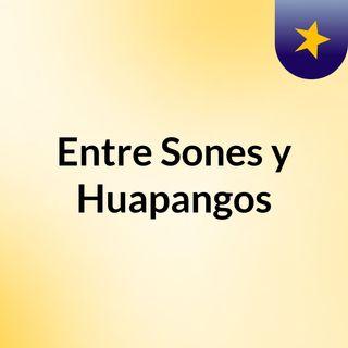 Entre Sones y Huapangos