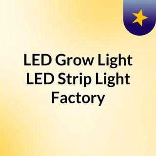LED Grow Light, LED Strip Light Factory in China - Light On