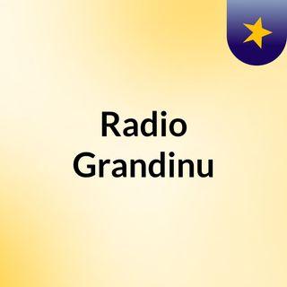 Live Da Rádio Grandinu, Primeira Transmissão