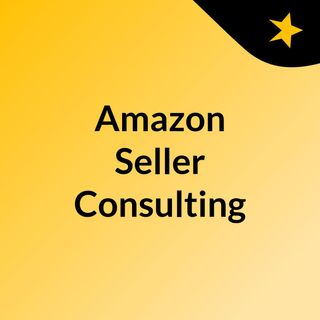 Amazon Seller Consulting