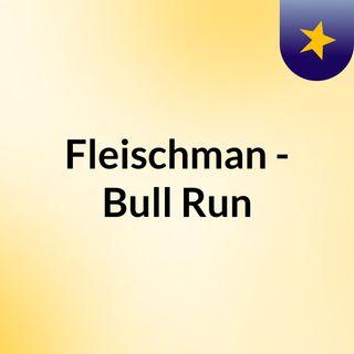 Fleischman - Bull Run