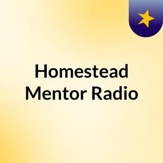 Homestead Mentor Radio