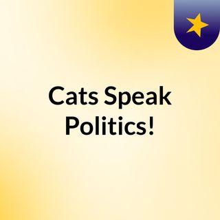 Cats Speak Politics!