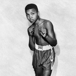 Il richiamo del ring, gli esordi di Muhammad Ali
