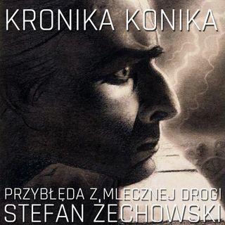 Przybłęda z Mlecznej Drogi. Stefan Żechowski